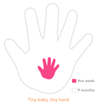 Babyhand copy