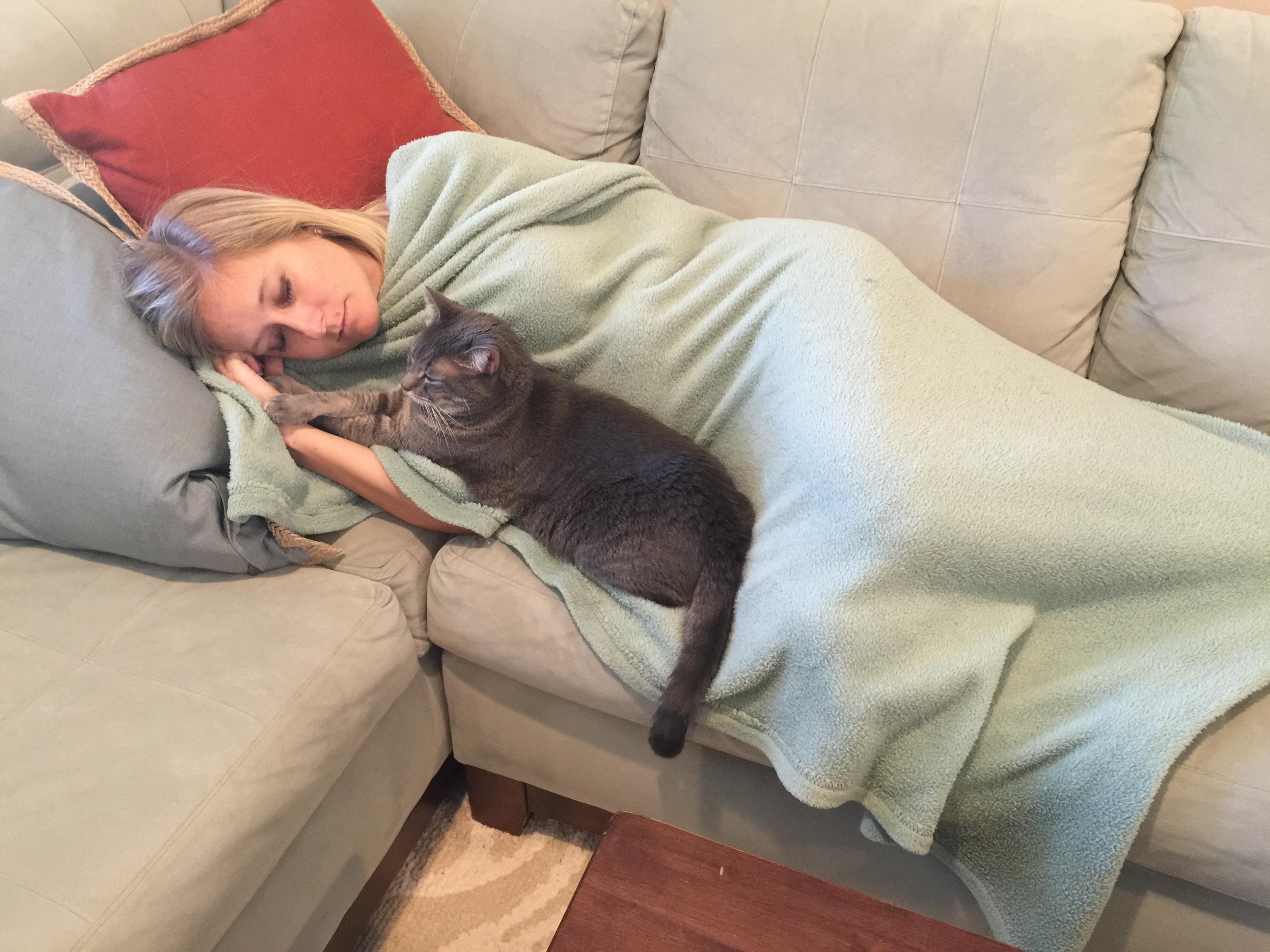 The help essays motherhood