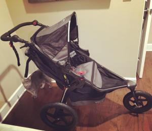 I think I'll be eager to return to running after Madelyn's born. Already looking forward to using my new BOB jogging stroller!